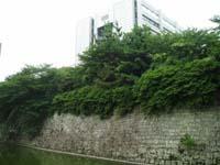 shizuoka_00.jpg