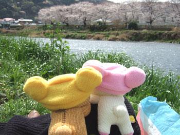 hanami-rila12.jpg