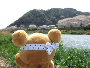 hanami-rila14.jpg