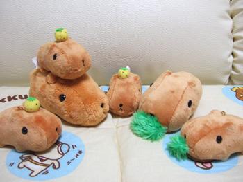 kapibara-san-s2.jpg